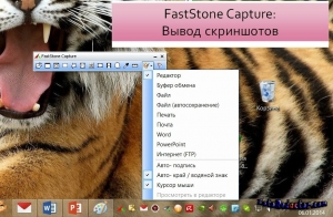 FastStone Capture картинка №3